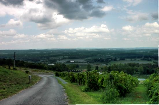 Bluemont Vineyard : View from the vineyard as a storm approaches