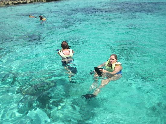 Island World Adventures: Snorkeling