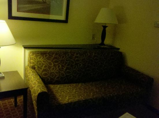 Comfort Suites Clinton: Sofa