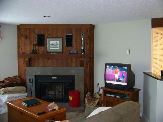 Wintergreen Resort: Living area w/ woodburning fireplace (we were checking out so ignore the mess)