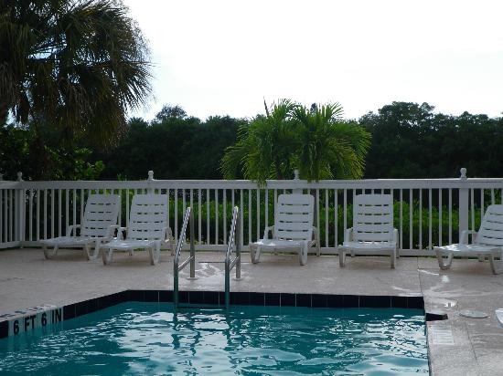 Siesta Key Bungalows: Pool