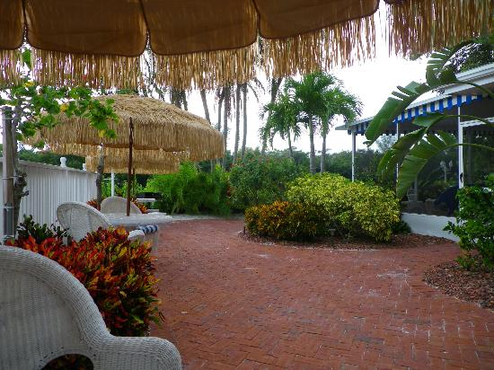 Siesta Key Bungalows: Near pool area