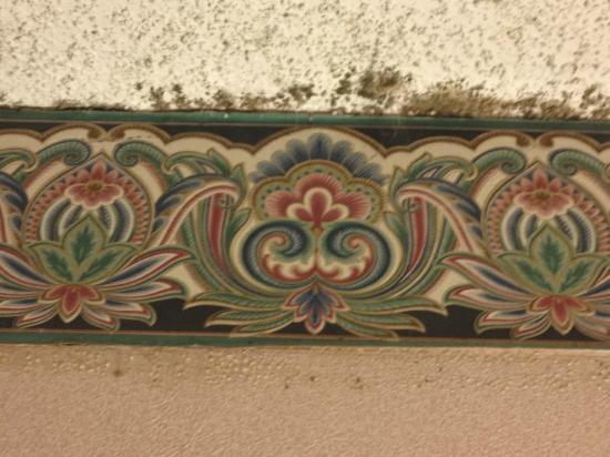 Best Western Staunton Inn: Moldy ceiling, water droplets on wall