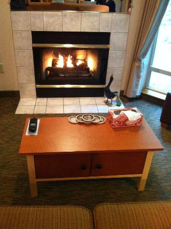 Whispering Woods Resort : The fireplace.