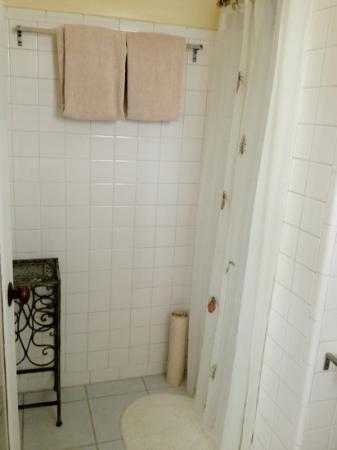 Beachfront Bed & Breakfast : roomy shower for you and your boo