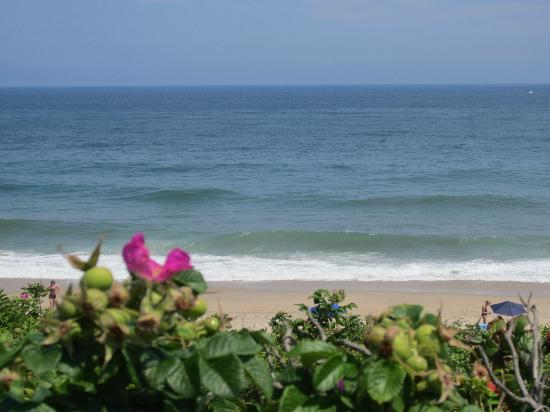 Beach Plum Motor Lodge: Beautiful and Natural  (Local) Cape Cod Beach