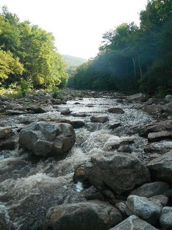 Dolly Sods Wilderness Area: Red Creek where Red Creek Trail crosses the creek