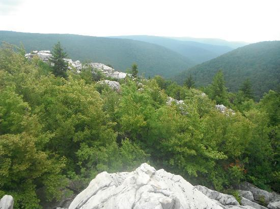 Dolly Sods Wilderness Area: View from Lion's Head