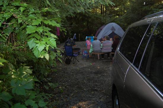 Surf Junction Campground: Campsite from road