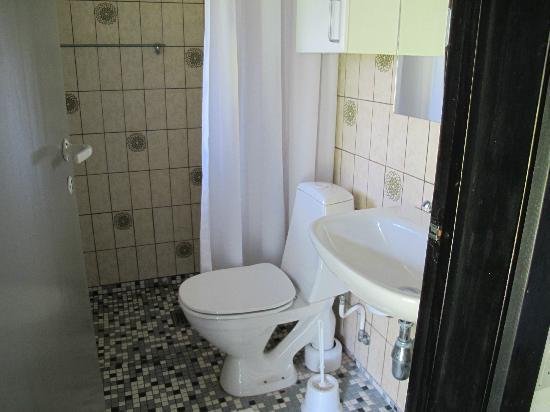 Hotel Abildgaard: Bathroom has shower