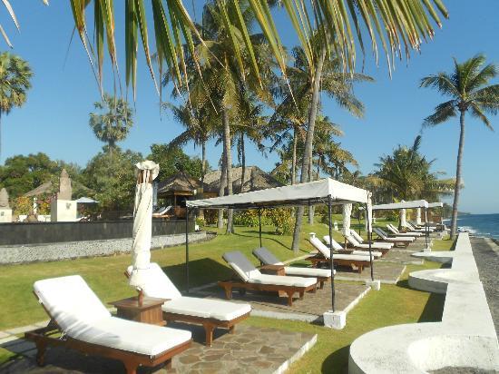 Siddhartha Ocean Front Resort & Spa: Liegen mit Meerblick