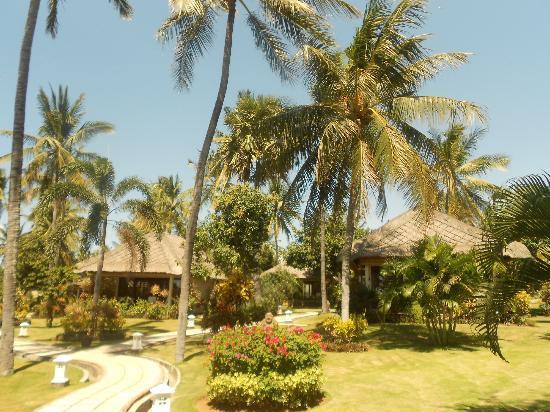 Siddhartha Ocean Front Resort & Spa: Blick auf die Bungalows