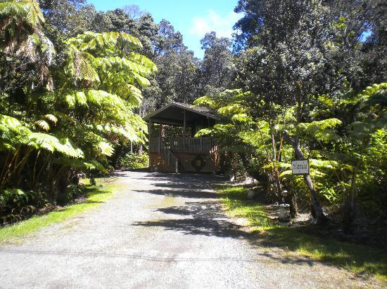 Chalet Kilauea: Hapu'u Forest Bungalow