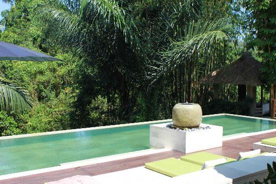The Purist Villas and Spa: pool