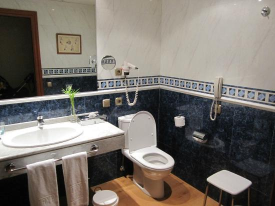 Tryp Gijon Rey Pelayo Hotel: baño