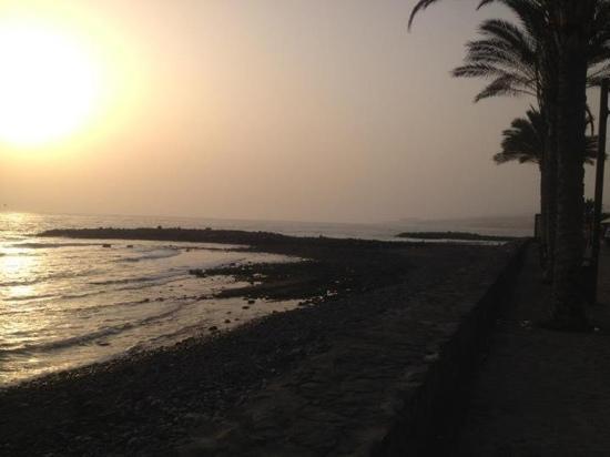 HD Parque Cristobal Tenerife : the beach