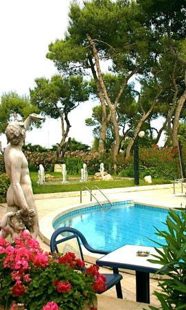 Hotel Parco dei Principi: Piscina