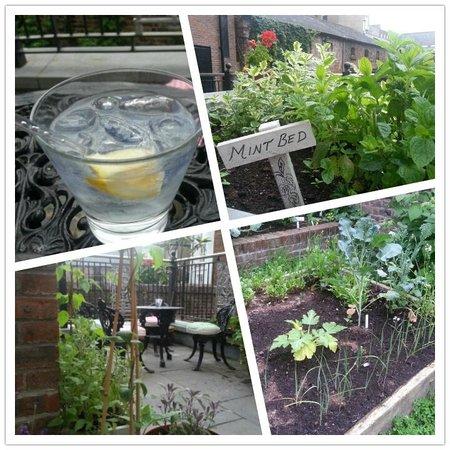 No. 1 Pery Square Hotel & Spa: Garden terrace; perfect for g&t