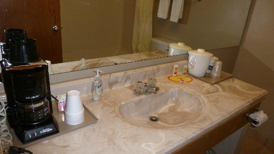 Econo Lodge SeaTac Airport: Bathroom Sink & Coffee Pot.