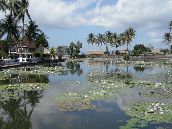 The Zala Villa Bali: BALI