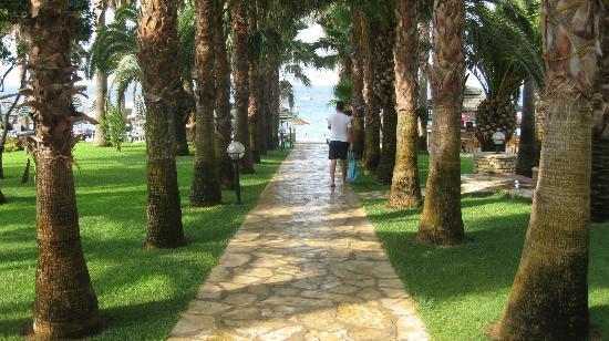 Meryan Hotel : entrance to the beach
