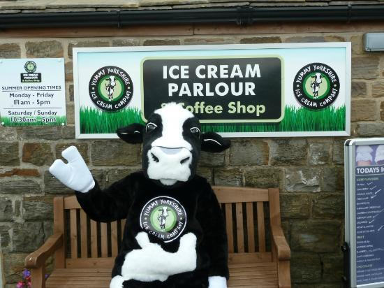 Yummy Yorkshire: Camilla the cow