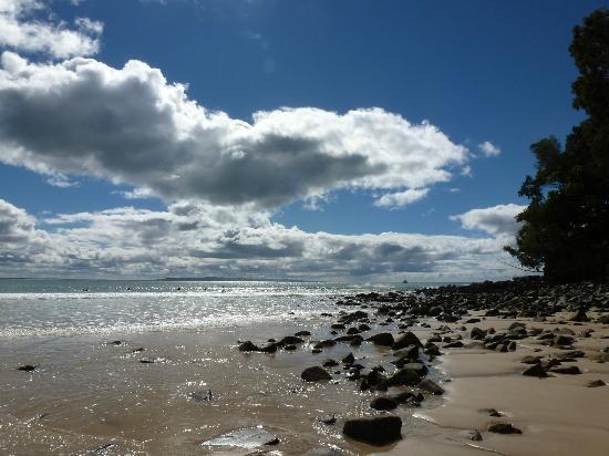 Noosa Main Beach: Noosa Beach Perfect