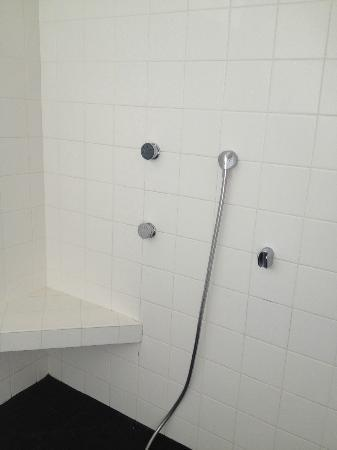 The Duchamp Healdsburg: walk in shower