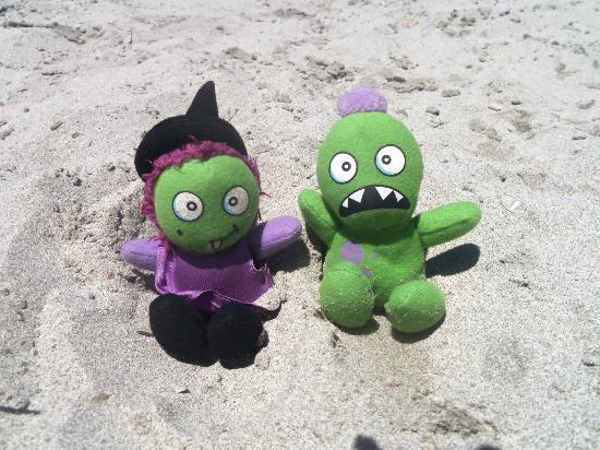 Ladies Beach: monsters delight