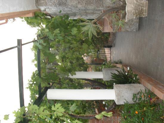 Residence Schuler: Garden area