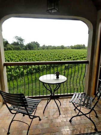 Sannino Vineyard B and B: amazing patio view