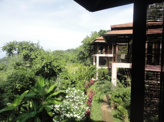 TikiVillas Rainforest Lodge: Villas