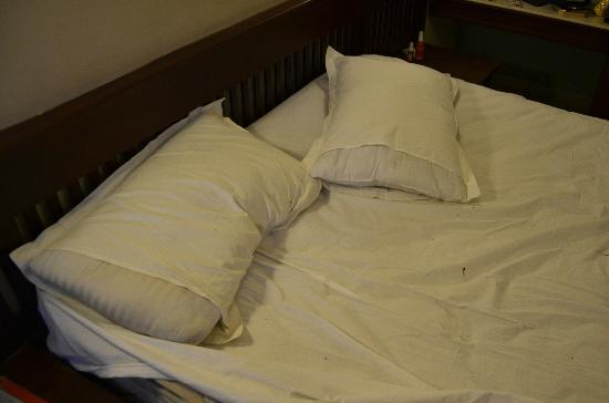 Astoria Hotel : Sheets after a couple of hours with the bedbugs
