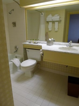DoubleTree by Hilton Hotel Denver: Bath was dated and worn but clean and sufficient.