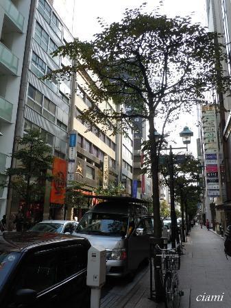 Namiki-dori: 並木通り