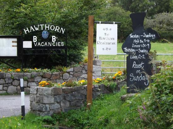 Hawthorn Cottages: First Sight