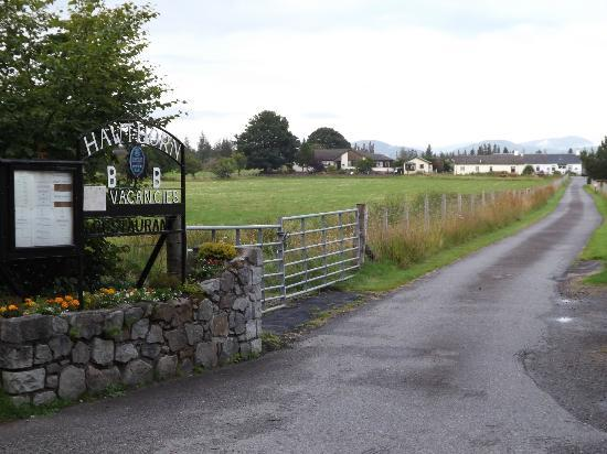 Hawthorn Cottages: Down the drive