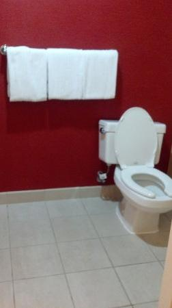 كورت يارد باي ماريوت هانوفر ويباني: Bathroom 