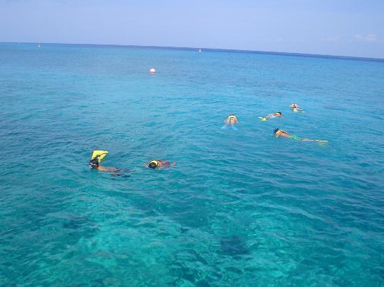 Hotel Cozumel and Resort: Snorkel en Hotel