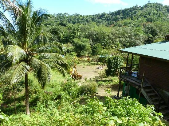 Rosalie Forest Eco Lodge: Overlooking lodge from penthouse suite