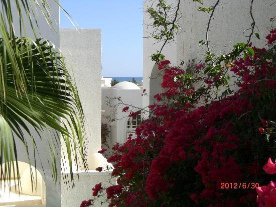 Hotel Les Quatre Saisons: Jardins