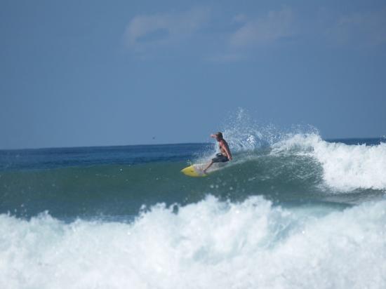Funky Monkey Lodge: surf