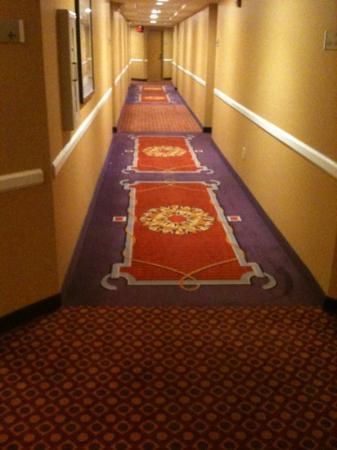 Embassy Suites by Hilton Phoenix-Scottsdale: carpet is a bit retro
