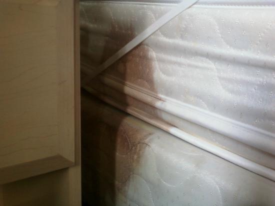 Rodeway Inn: mattress