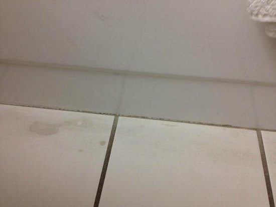 Radisson Hotel Duluth - Harborview: Radisson Duluth Hotel Room Bathroom Mold and Floor Stains