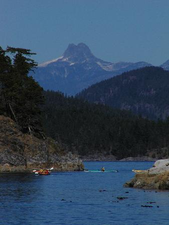 Quadra Island Kayaks - Day Tours