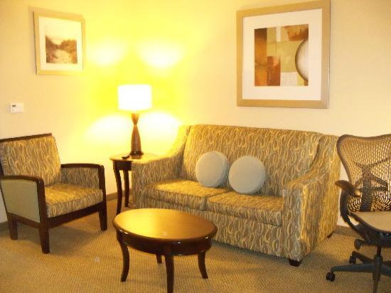 Hilton Garden Inn South Padre Island: Living space