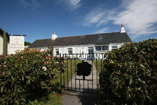 The Hawthorn Restaurant: exciting modern food in a charming & traditional croft setting