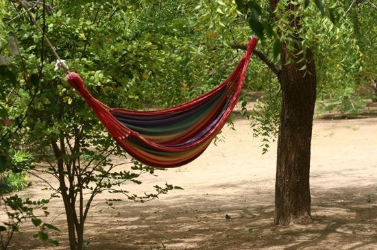Gite l'Anacardier: Each bungalow also has a hammock