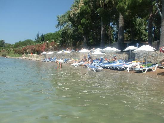 Omer Holiday Resort: plage